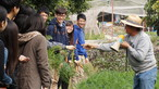 Visit to Organic Farm in Ha Pak Nai - Photo - 7