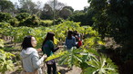 Visit to Organic Farm in Ha Pak Nai - Photo - 25